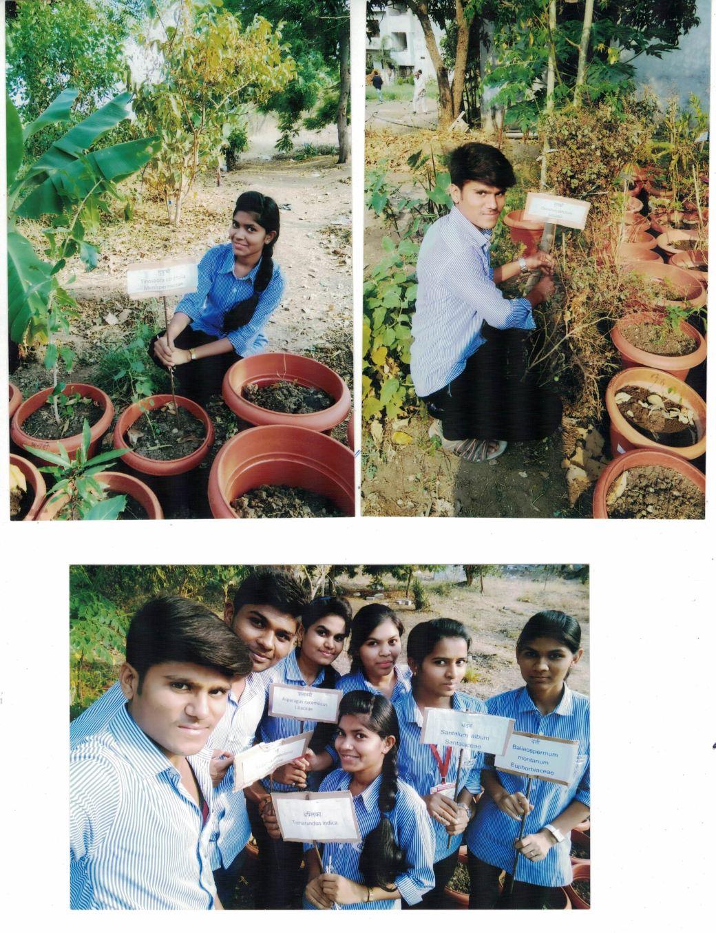 Tree plantation at Harbal Garden.jpg